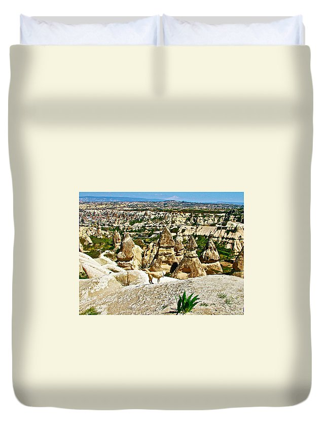 Dog Looking At Fairy Chimneys In Cappadocia Duvet Cover featuring the photograph Dog Looking At Fairy Chimneys In Cappadocia-turkey by Ruth Hager