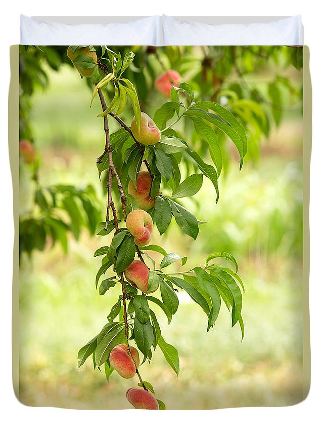 Peach Duvet Covers