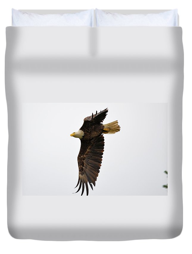 Eagle Duvet Cover featuring the photograph Eagle Flight by Bonfire Photography