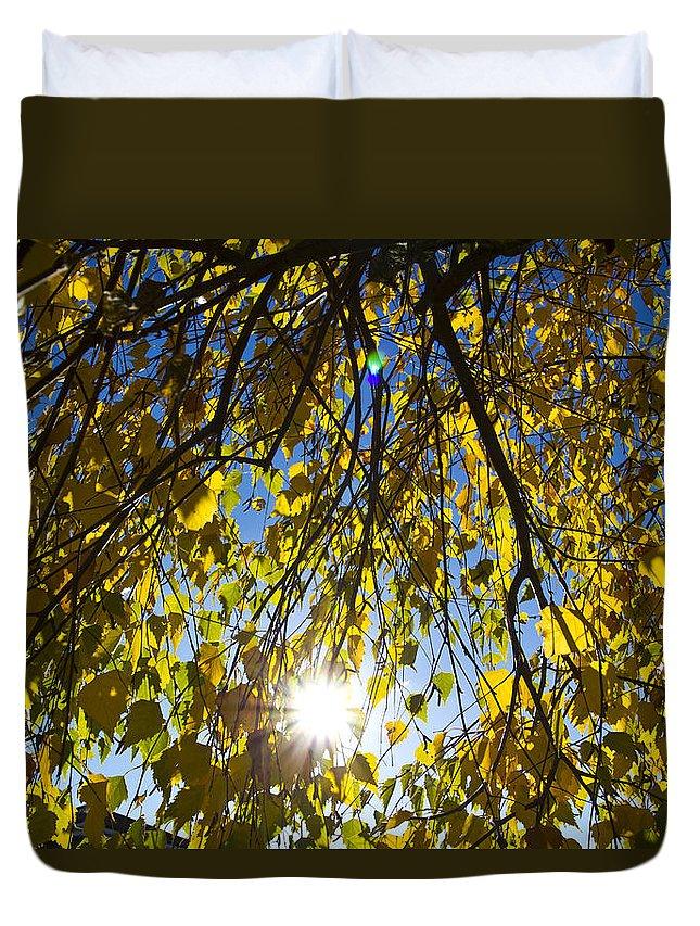 Autumn Duvet Cover featuring the photograph Early Autumn by David Pyatt