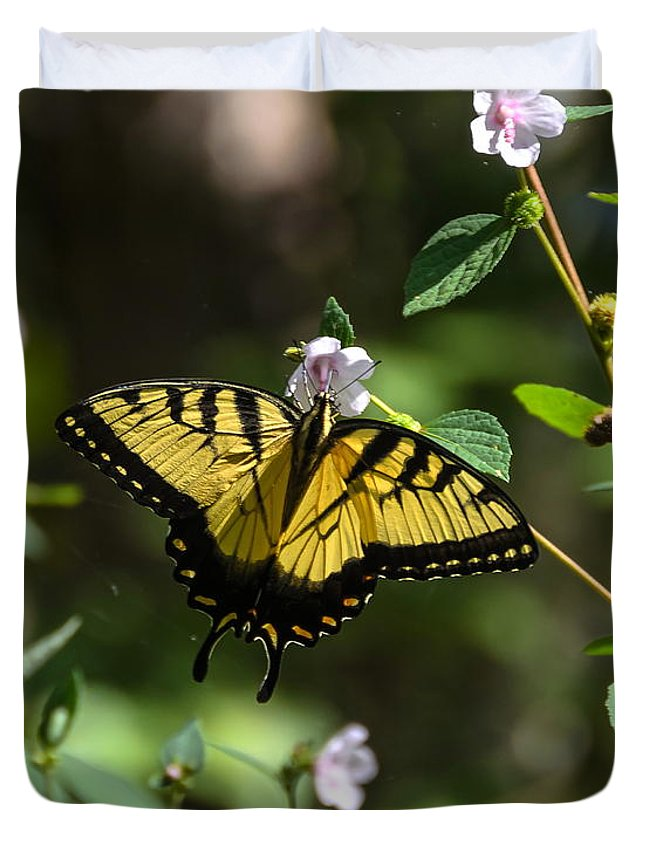 Butterfly Duvet Cover featuring the photograph Eastern Tiger Swallowtail by Carol Bradley