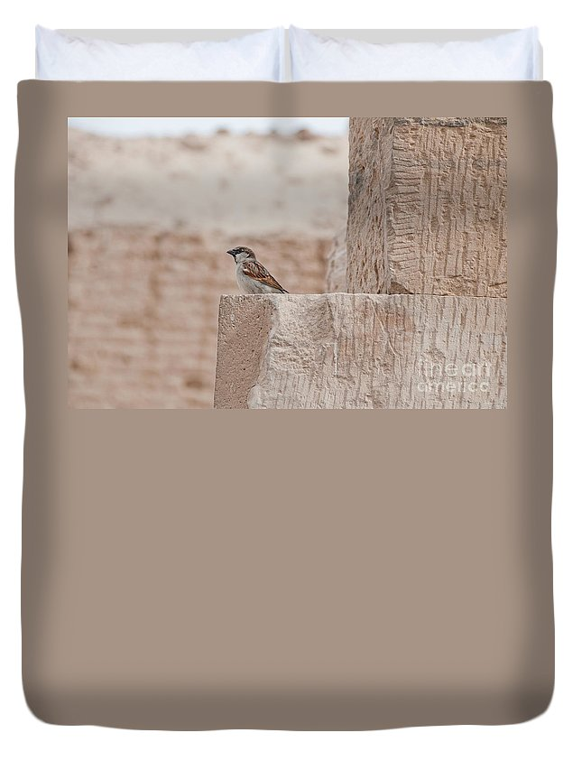 Africa Duvet Cover featuring the digital art Edfu by Carol Ailles