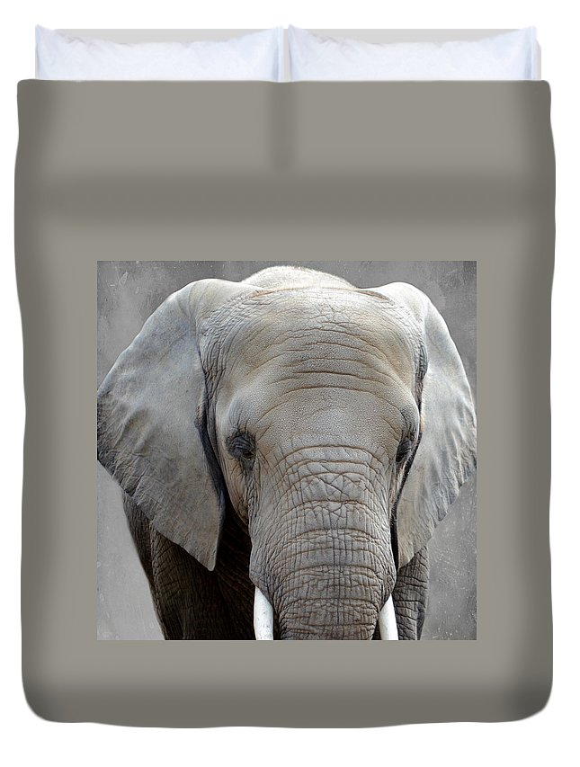 Elephant Duvet Cover featuring the photograph Elephant by Heike Hultsch