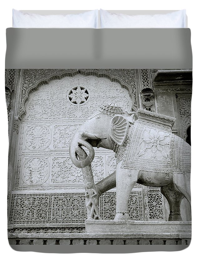 India Duvet Cover featuring the photograph The Beautiful Elephant by Shaun Higson