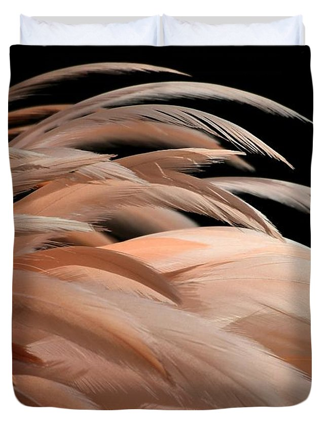 Flamingo Duvet Cover featuring the photograph Fabulous Feathers by Sabrina L Ryan