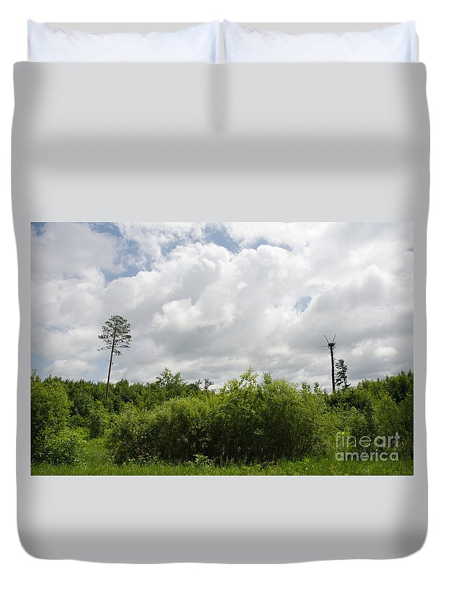 Tamarac Duvet Cover featuring the photograph Falcon Nest 3 by Cassie Marie Photography