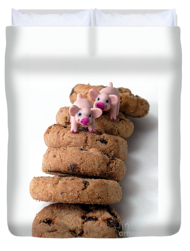 Chocolate Chip Duvet Cover featuring the photograph Fat Pigs 2 by Amy Cicconi