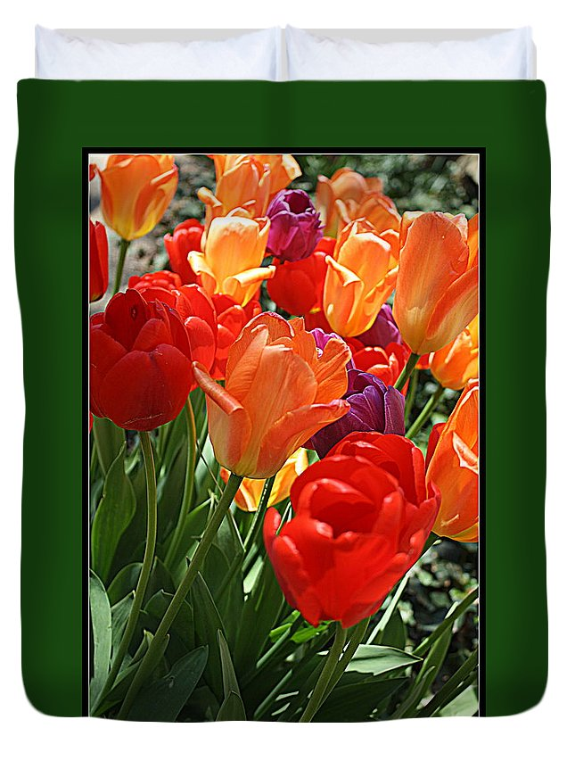 Tulips Duvet Cover featuring the photograph Festival Of Tulips by Dora Sofia Caputo Photographic Design and Fine Art