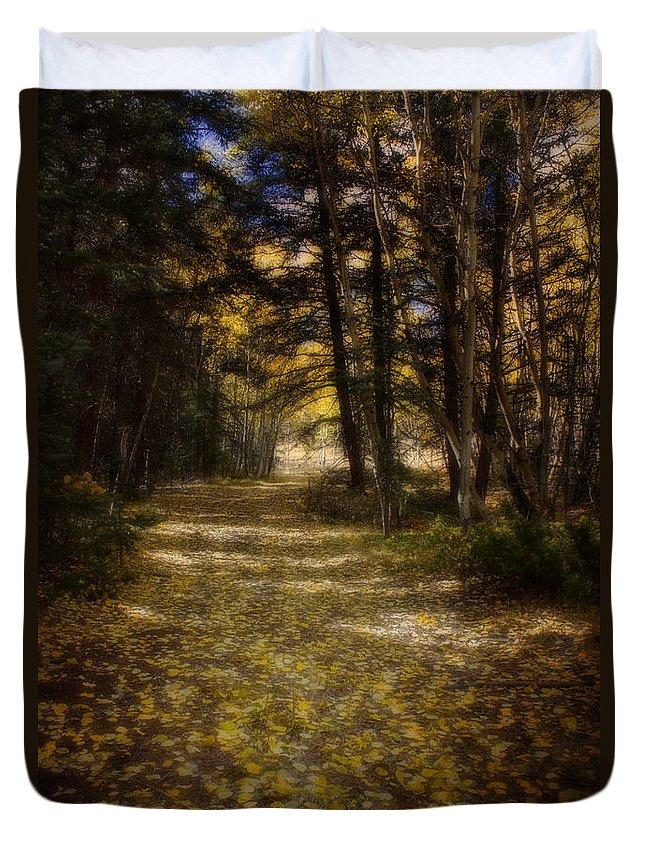Aspen Duvet Cover featuring the photograph Follow The Light by Ellen Heaverlo
