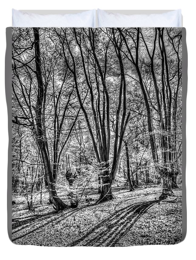 Forest Duvet Cover featuring the photograph Forest View by David Pyatt