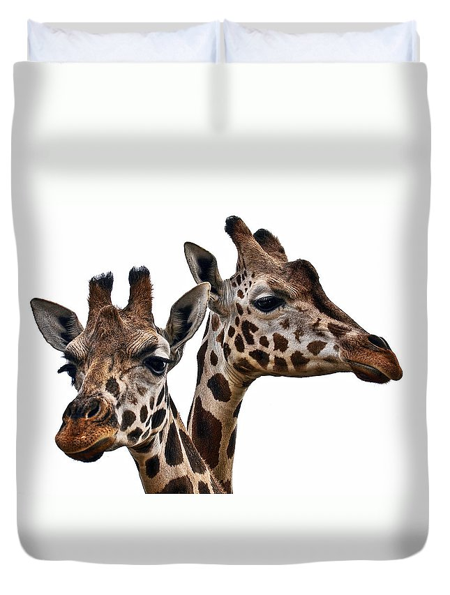 Animal Duvet Cover featuring the photograph Giraffes by Marcia Colelli