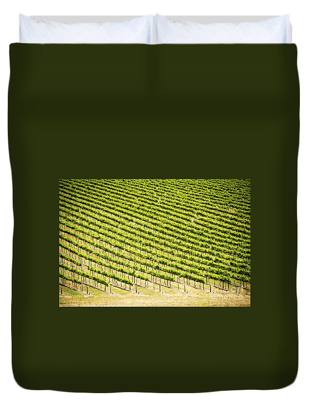 Wine Duvet Cover featuring the photograph Grape Vines by Tim Hester