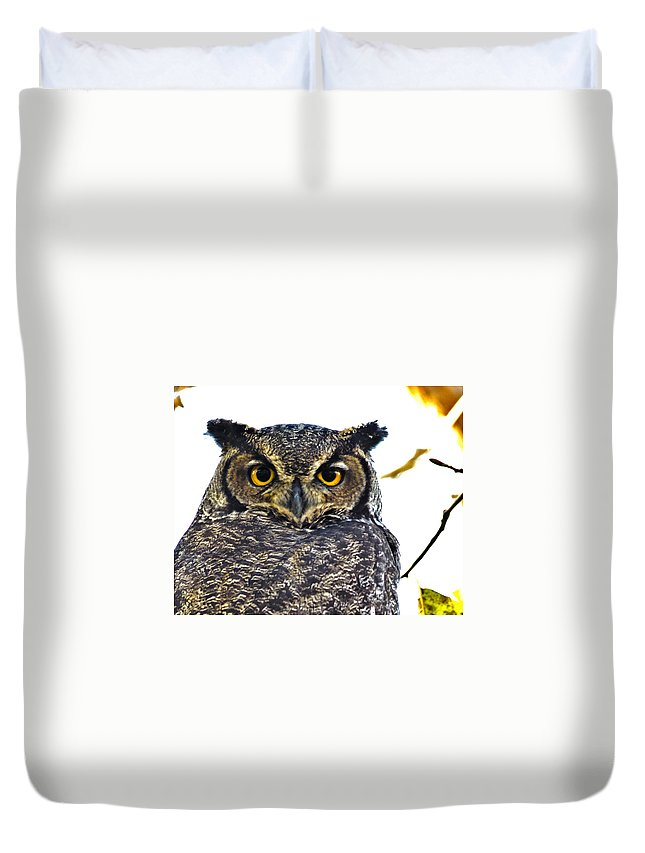 Great Horned Owl Duvet Cover featuring the photograph Great Horned Owl by Rob Mclean