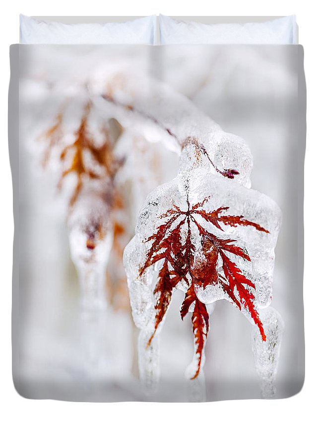 Leaf Duvet Cover featuring the photograph Icy Winter Leaf by Elena Elisseeva