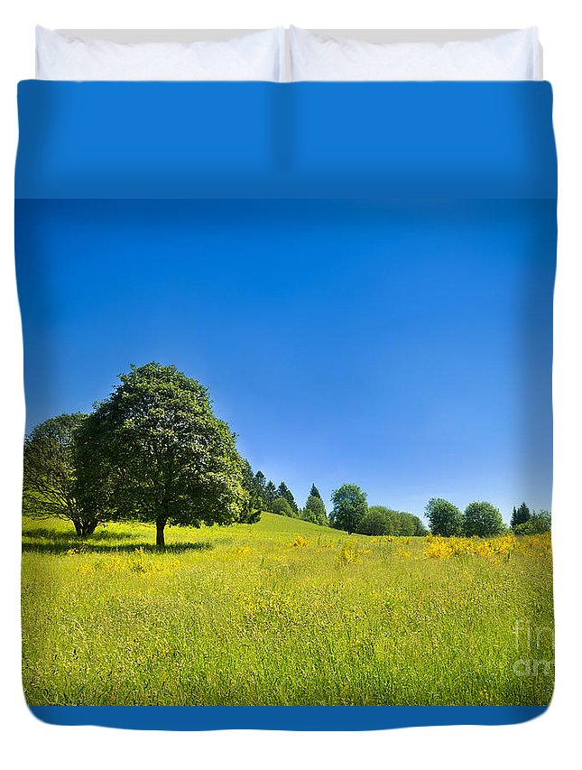 Tree Duvet Cover featuring the photograph Idyllic Landscape by Jochen Schoenfeld