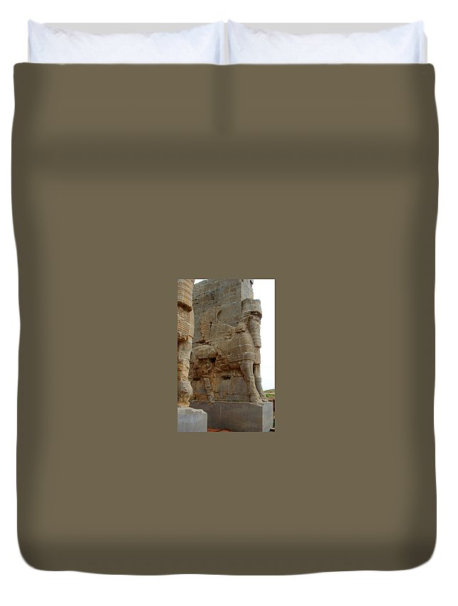 Persepolis Duvet Cover featuring the photograph Iran Persepolis by Lois Ivancin Tavaf