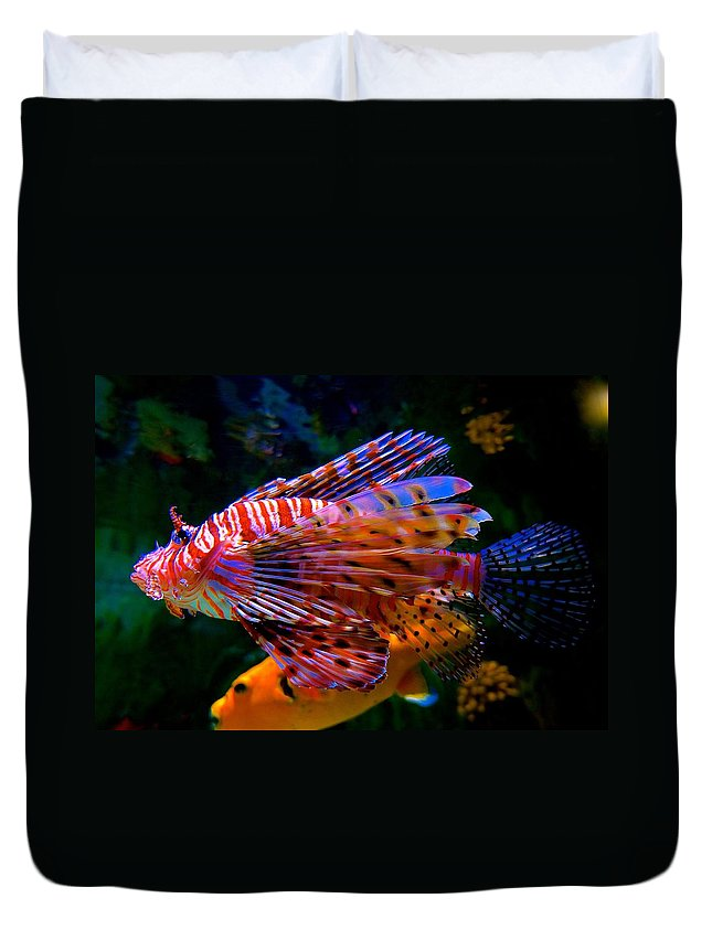 Lionfish Duvet Cover featuring the photograph Just Cruising Along by Tim G Ross