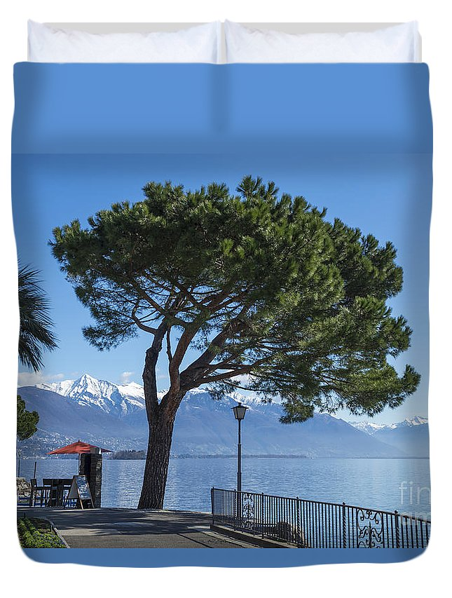 Street Duvet Cover featuring the photograph Lakeside With Trees by Mats Silvan