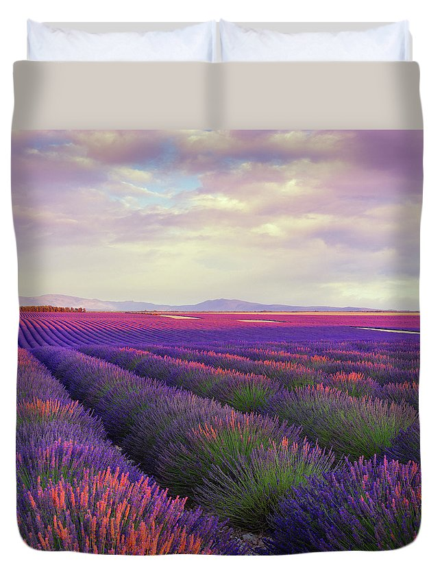 Dawn Duvet Cover featuring the photograph Lavender Field At Dusk by Mammuth