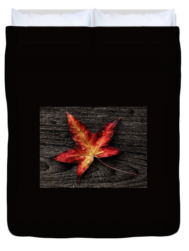Autumn Duvet Cover featuring the photograph Leave by TouTouke A Y