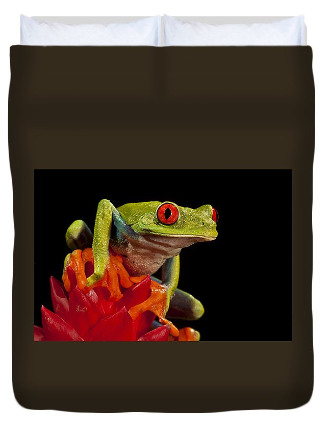 Frog Duvet Cover featuring the photograph Legs by Jack Milchanowski