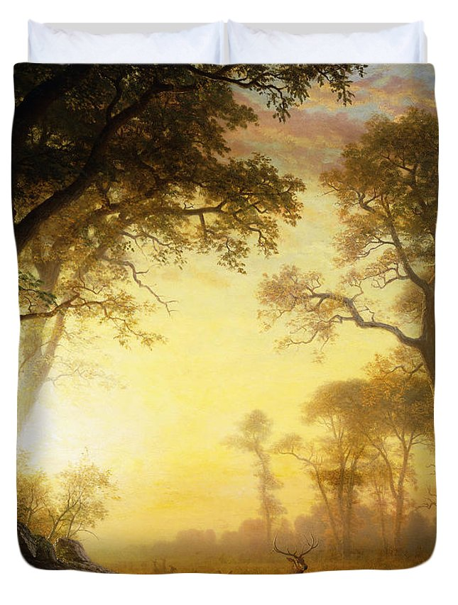 19th Century Duvet Cover featuring the painting Light In The Forest by Albert Bierstadt