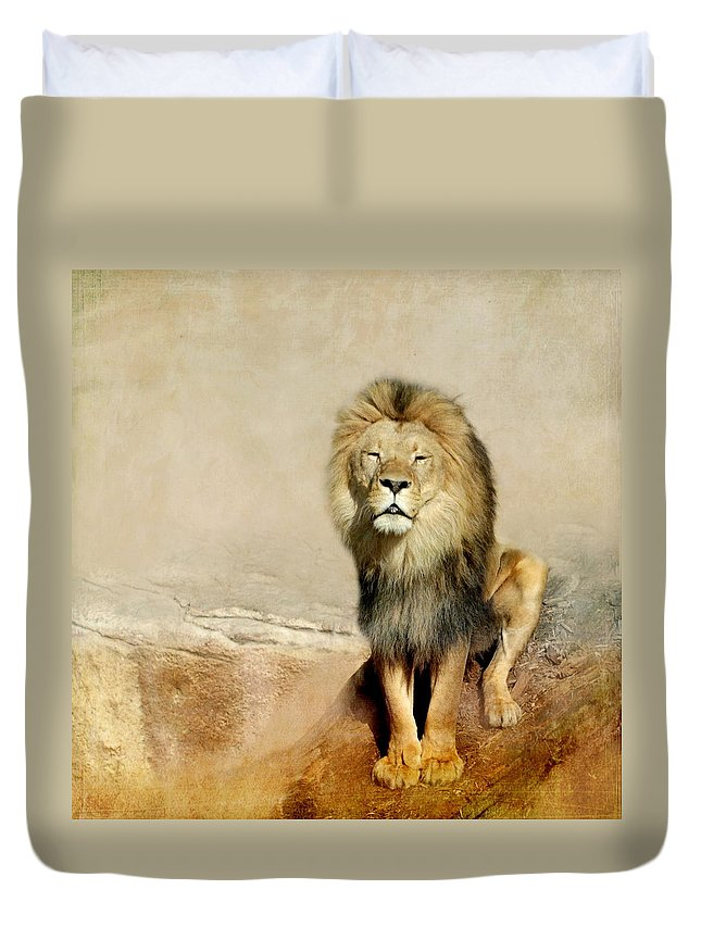 Lion Duvet Cover featuring the photograph Lion by Heike Hultsch
