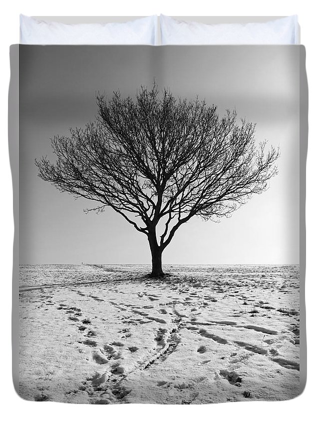 Lone Tree Winter Duvet Cover featuring the photograph Lone Tree Winter by Julia Gavin
