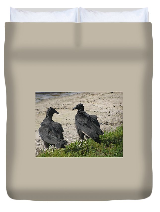 Vultures Duvet Cover featuring the photograph Look At Me by Zina Stromberg