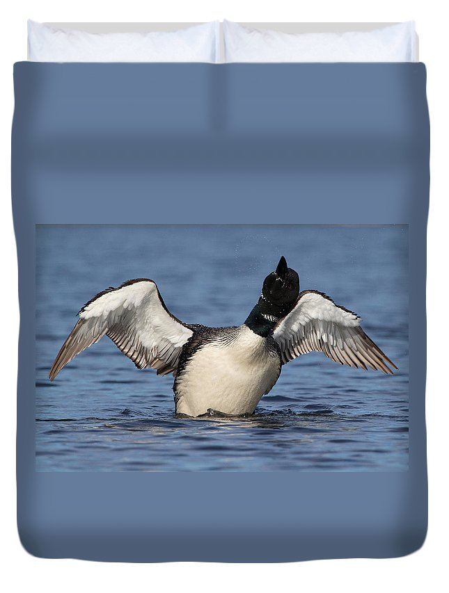 Loon Duvet Cover featuring the photograph Loon Dance by Stephanie McDowell