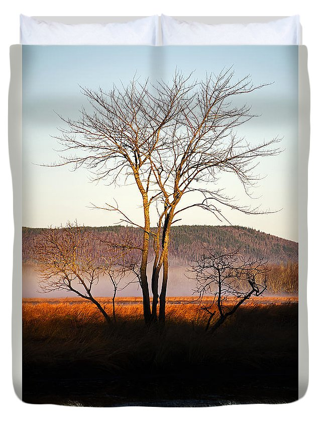 Tree Duvet Cover featuring the photograph Marsh Tree Reflections by Jeff Galbraith