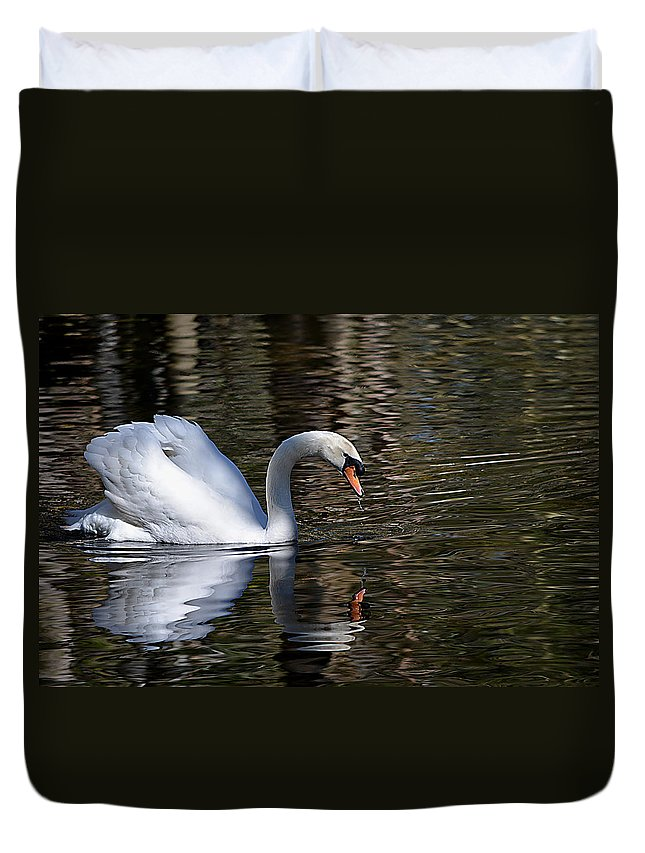 Nature Duvet Cover featuring the photograph Mirror Mirror by Judy Wanamaker