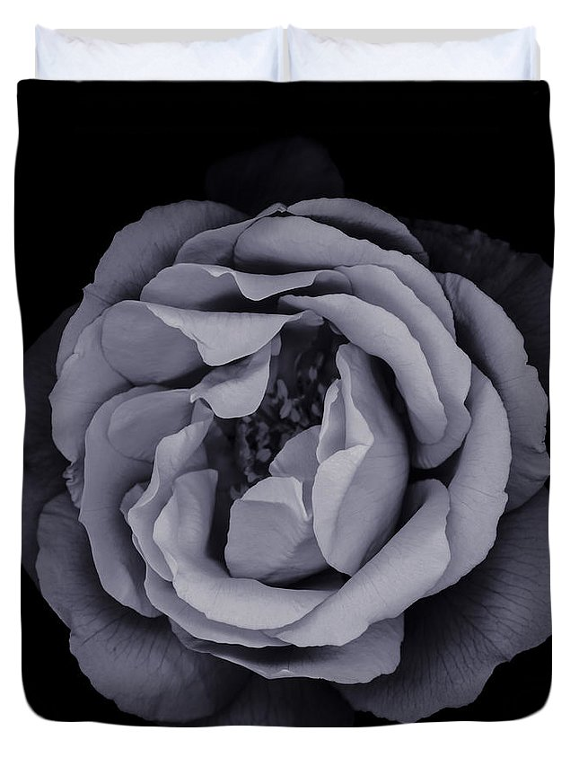 Rose Duvet Cover featuring the photograph Monochrome Rose by Oscar Gutierrez