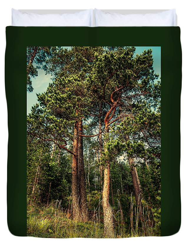 Island Duvet Cover featuring the photograph Northern Forest by Jenny Rainbow