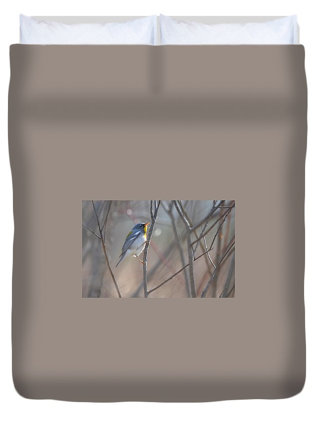 Northern Parula Duvet Cover featuring the photograph Northern Parula by James Petersen