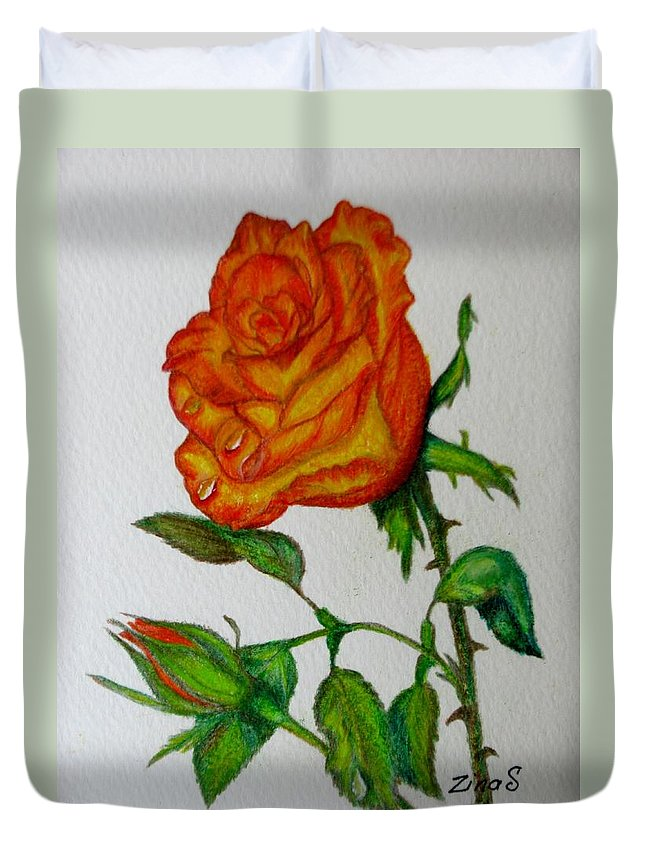 Roses Duvet Cover featuring the drawing Orange Rose by Zina Stromberg