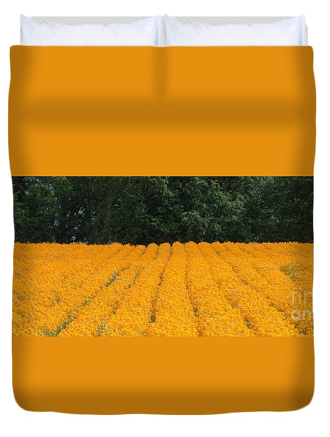 Oregon Duvet Cover featuring the photograph Oregon Orange Field Panoramic by Mike Nellums