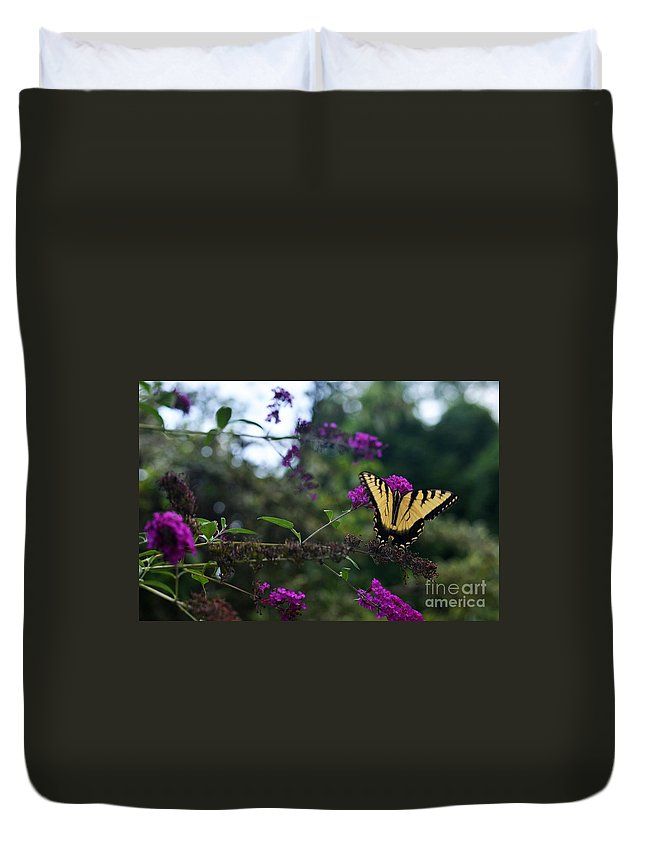 Butterfly Duvet Cover featuring the photograph Out Of Bounds II by Judy Wolinsky