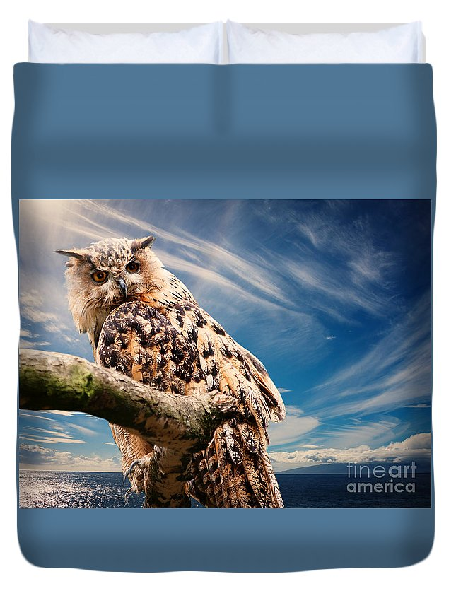 Owl Duvet Cover featuring the photograph Owl by Christine Sponchia