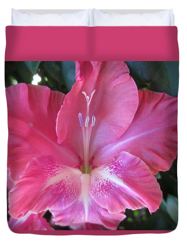 Pink Duvet Cover featuring the photograph Pink And White Gladiolus by Barbara Yearty