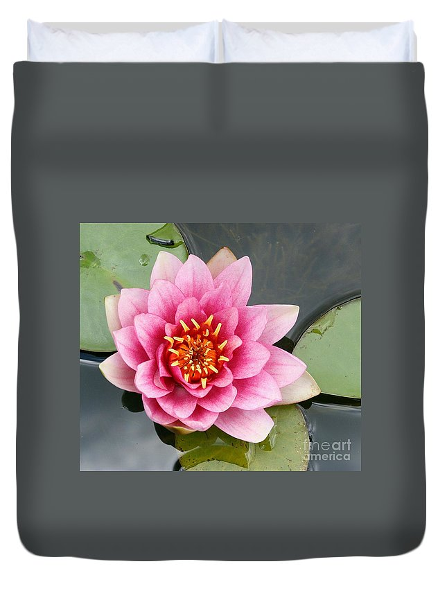 Lily Duvet Cover featuring the photograph Pink Waterlily by Christiane Schulze Art And Photography
