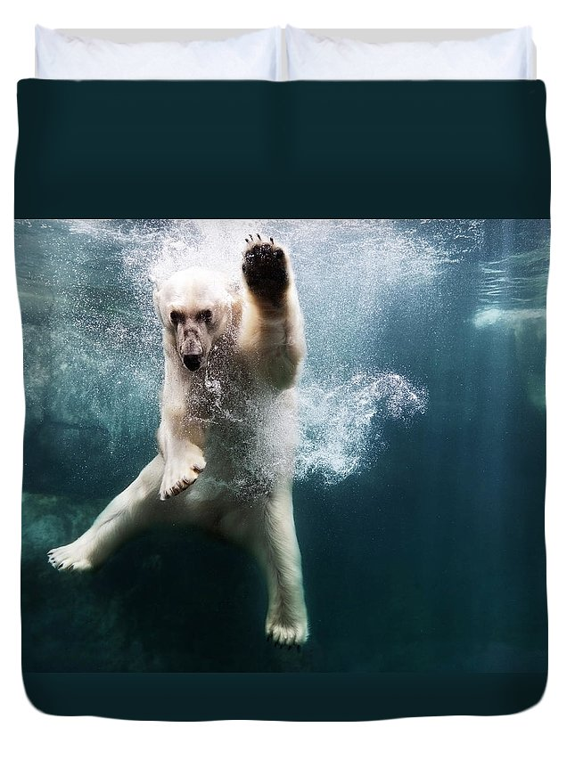 Diving Into Water Duvet Cover featuring the photograph Polarbear In Water by Henrik Sorensen