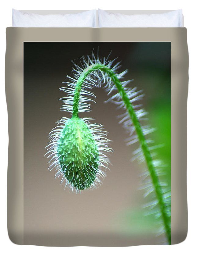 Poppy Duvet Cover featuring the photograph Poppy Bud by Chris Day