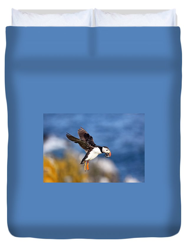 Animal Duvet Cover featuring the photograph Puffin by Grant Glendinning