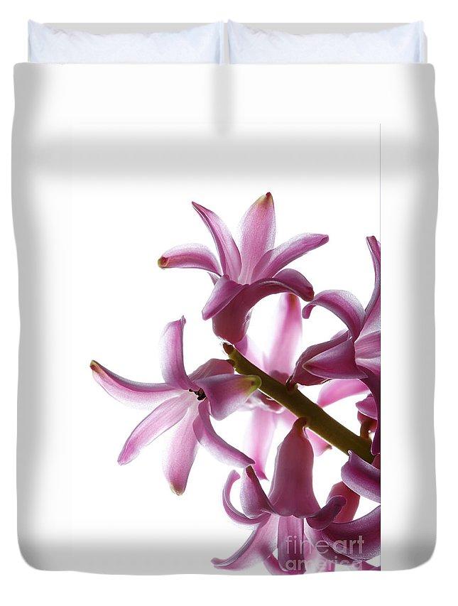Arrangement Duvet Cover featuring the photograph Purple Hyacinth Macro Shot. by Jan Brons