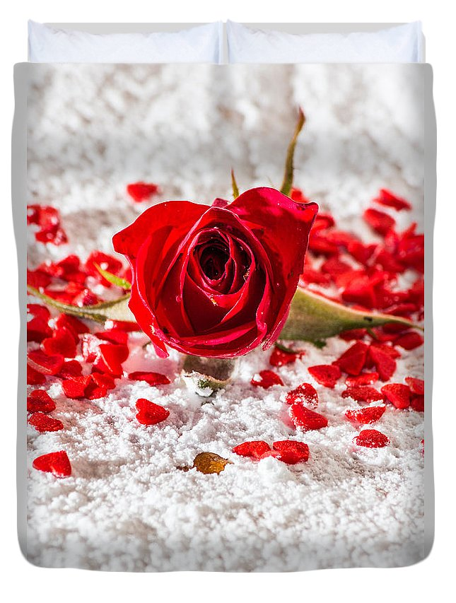 Red Duvet Cover featuring the photograph Red Rose by Ernesto Santos