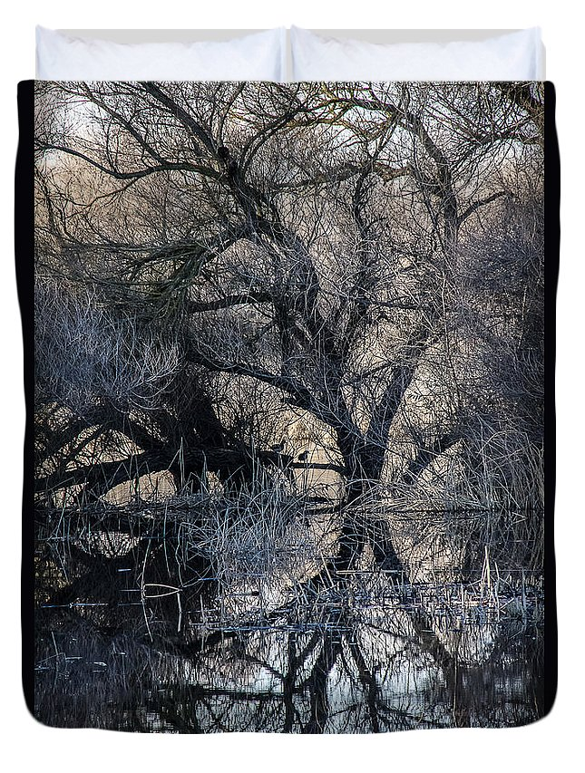 Reflections Duvet Cover featuring the photograph Reflections by Brian Williamson