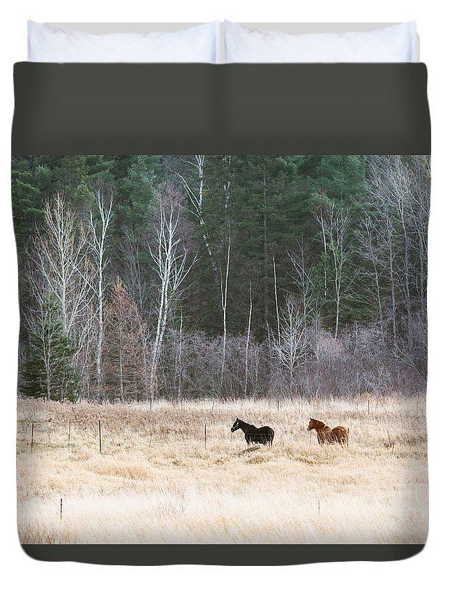Duvet Cover featuring the photograph Resting by Cheryl Baxter