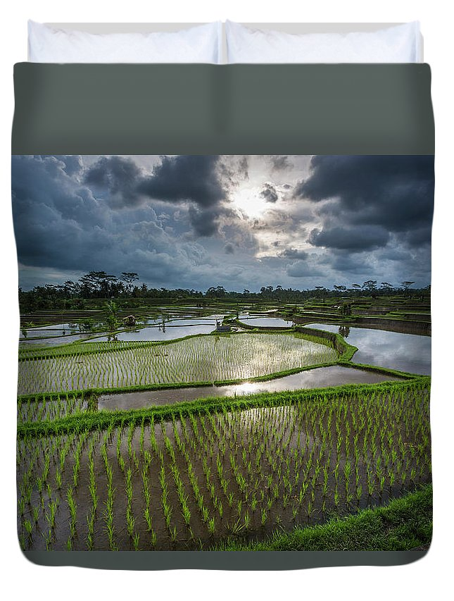 Tranquility Duvet Cover featuring the photograph Rice Terraces In Central Bali Indonesia by Gavriel Jecan