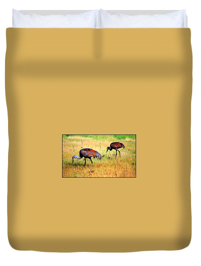 Bird Duvet Cover featuring the photograph Sandhill Cranes by Kathy Sampson